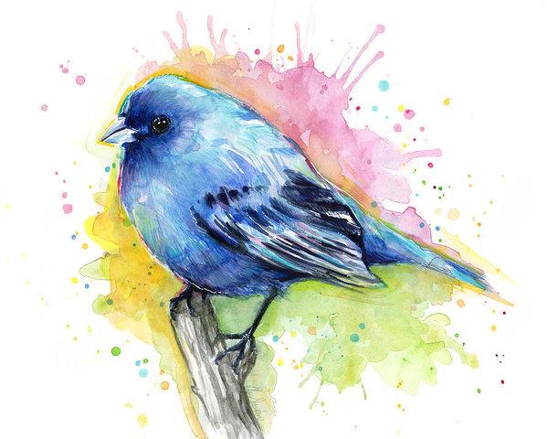 L'oiseau qui veut partir du nid