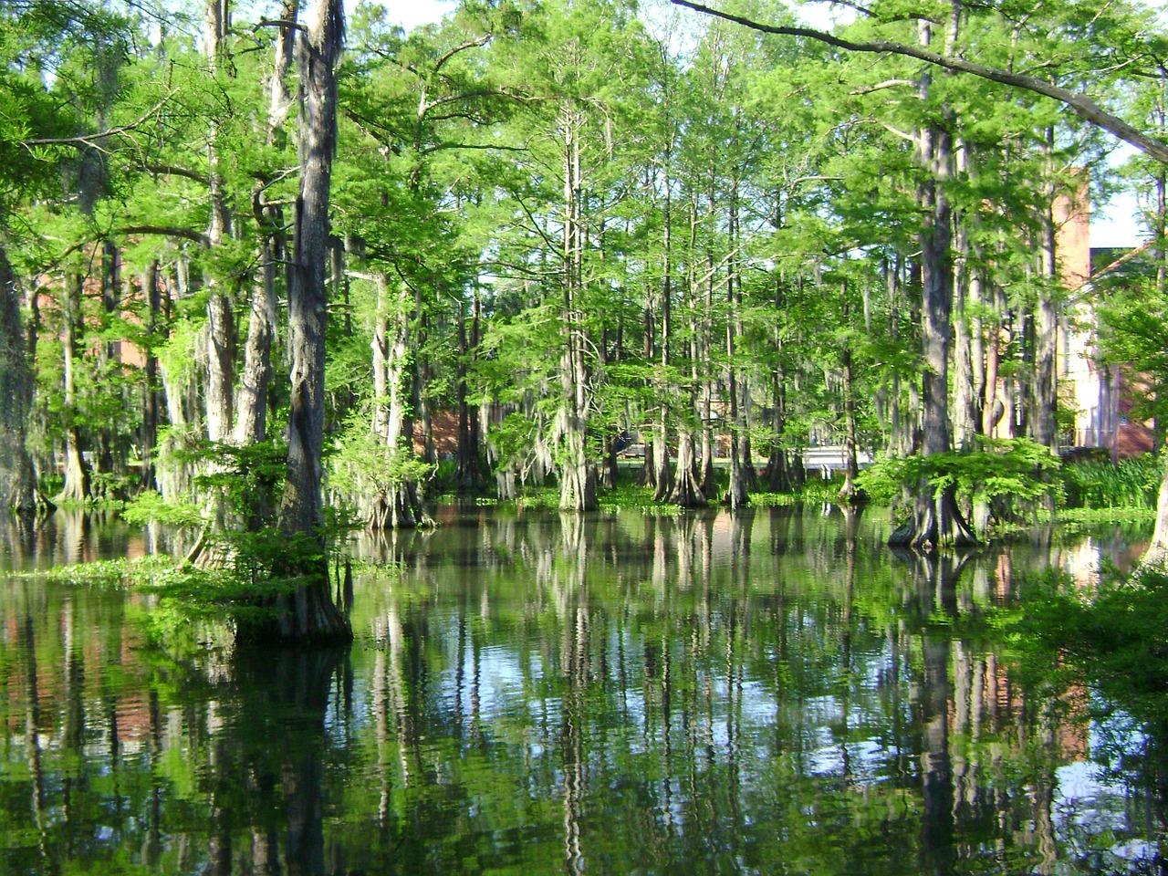 Louisiane, la pêcheuse et non la pécheresse!